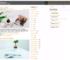 AyaMagazine WordPress Theme