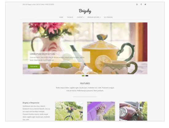 Brigsby WordPress Theme