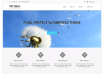 Clean Lite WordPress Theme