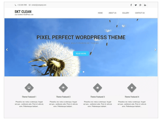 Clean Lite WordPress Theme