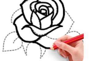How To Draw Flowers app logo