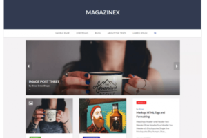 Magazinex Lite WordPress Theme
