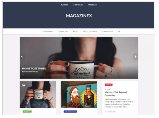 Magazinex Lite WordPress Theme