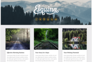 Seolib wordpress theme