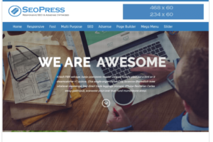 Seopress wordpress theme