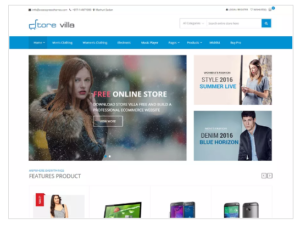 StoreVilla WordPress Theme