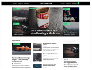 Story Magazine WordPress Theme