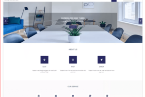 engager WordPress Theme