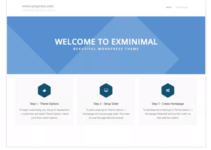 exMinimal WordPress Theme