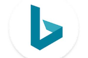 Microsoft Bing Search logo