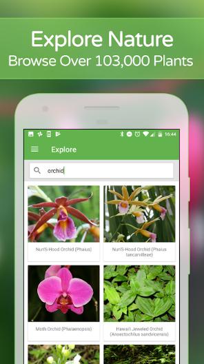 PlantSnap - Identify Plants, Flowers