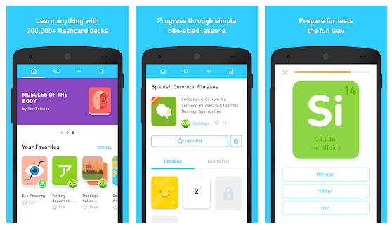 Tinycards by Duolingo Fun & Free Flashcards