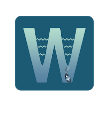 Wave Wall logo