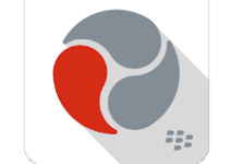 BlackBerry Workspaces Logo